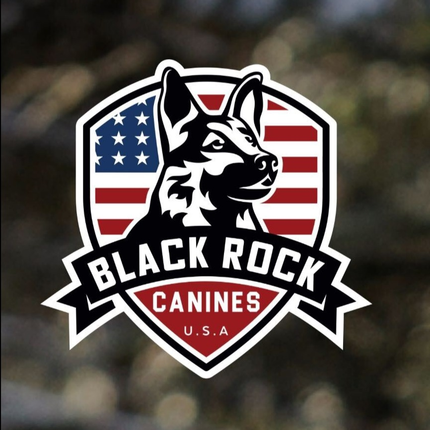 Black Rock Canines