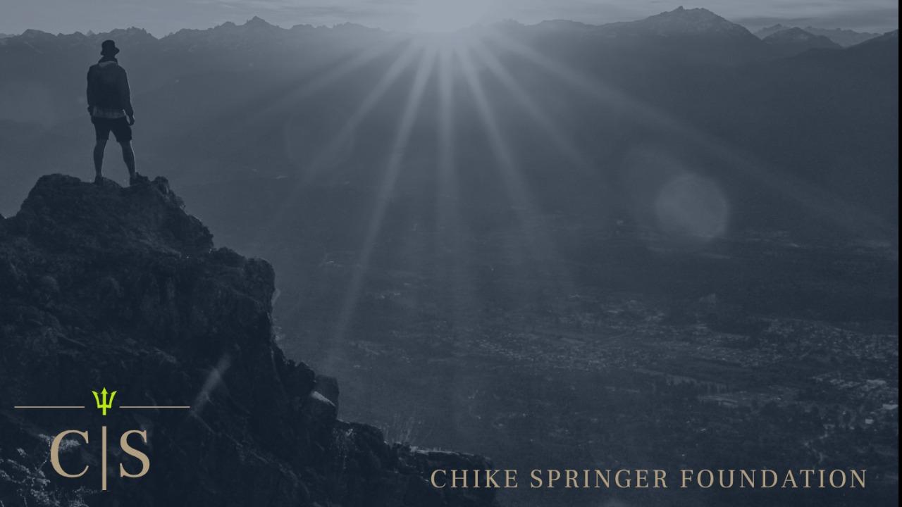 Chike Springer Foundation - Smarter, More Comprehensive Cancer Research
