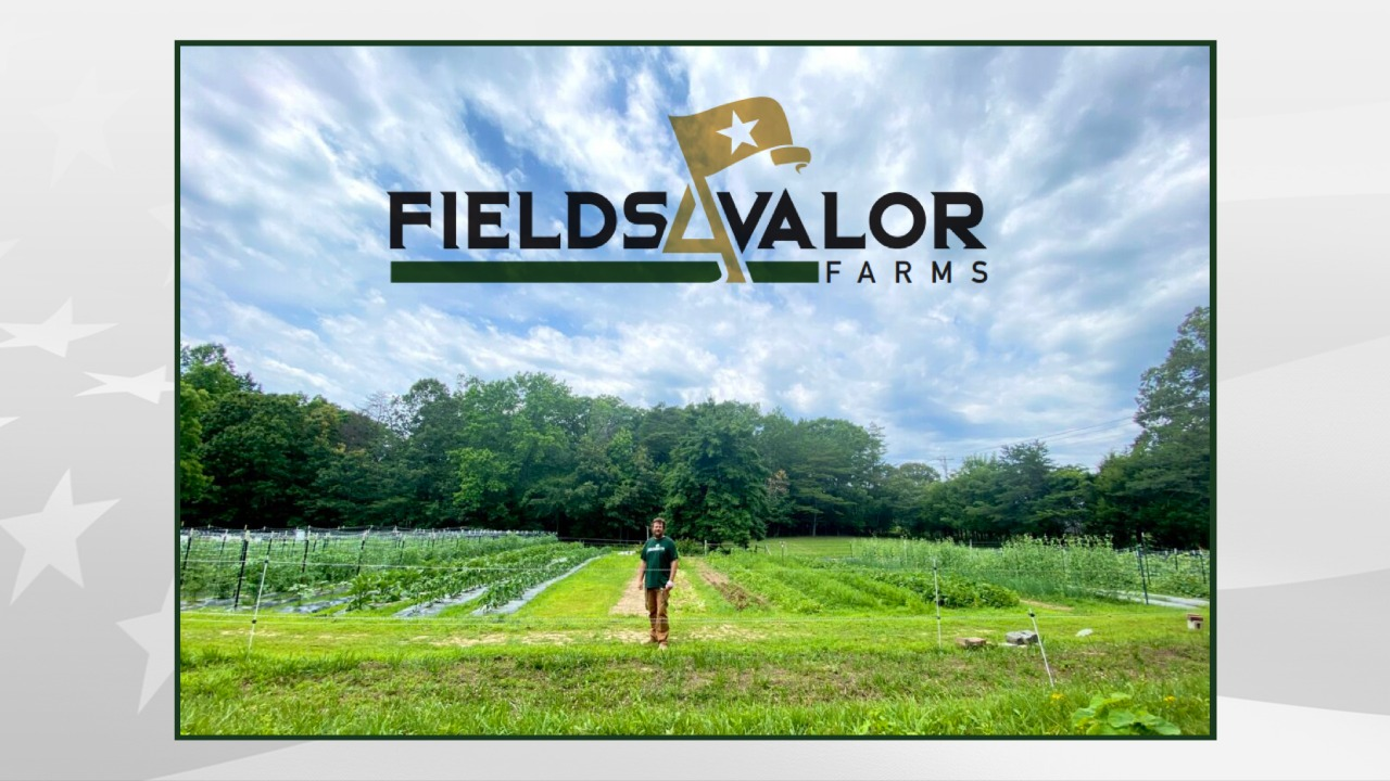 Fields4Valor Farms: Helping a Veteran Help Countless Veterans in Need